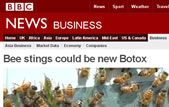 BBC News: Bee stings could be the new Botox.